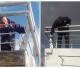 Trabajos de pintura para el mantenimiento del morro nuevo